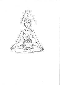 Symbiotic Meditation